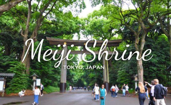 meiji-shrine-cover
